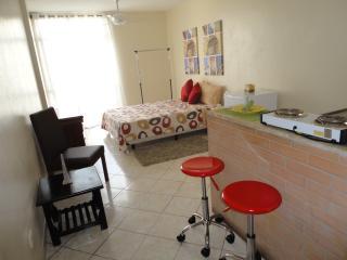 Perfect 1 bedroom Apartment in Sao Paulo - Sao Paulo vacation rentals