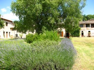 Poreta Bio Farm Suite A - Rome/1 hr 15 mins - Lenano vacation rentals