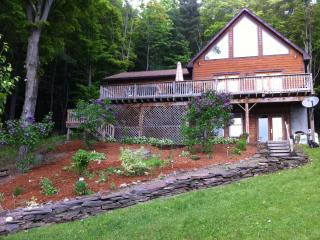 Cooperstown Beautiful Modern Home - Cooperstown vacation rentals