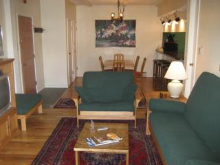 Great location and amenities at a reasonable price - Steamboat Springs vacation rentals