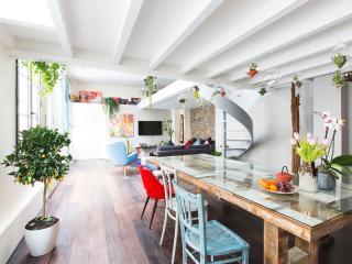 Precious parisien Loft, Le Marais, Notre Dame - Paris vacation rentals
