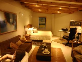 San Isidro Apartments & Studios,  with  A/C, cable TV and Wifi . - Lima vacation rentals