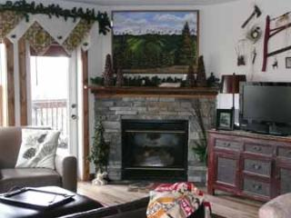 "Camp4 SkiIn/Out ""Grateful to be in the Mountains"" - Snowshoe vacation rentals"
