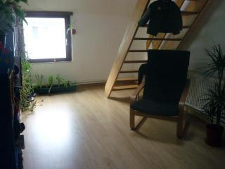 Appartement to rent in the centre of Ghent - Belgium vacation rentals