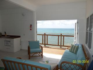 Newly Renovated Beachfront House - Puerto Rico vacation rentals
