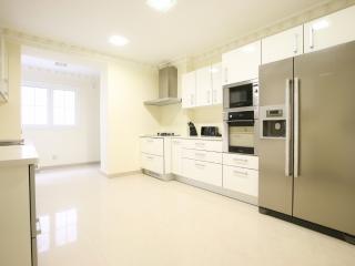 Luxury Air Conditioned 4 Bedroom apartment, Sleeps 8 in Central Lisbon - Costa de Lisboa vacation rentals