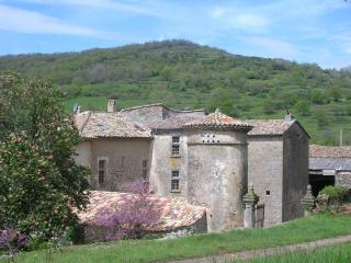 bed and breakfast in little castel - Pranles vacation rentals