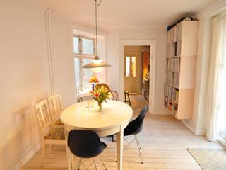 Large Copenhagen apartment near Central station - Copenhagen vacation rentals