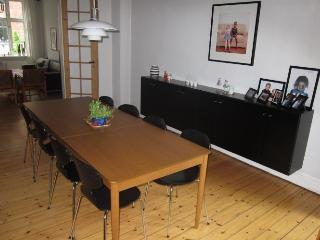 Lovely and attractive Copenhagen apartment near Forum - Copenhagen vacation rentals