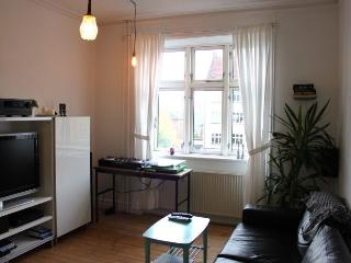 Nice Copenhagen apartment near Valby city center - Copenhagen vacation rentals