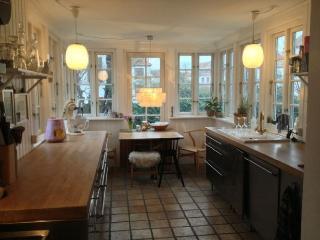 Wonderful Copenhagen villa near Danshoej station - Copenhagen vacation rentals