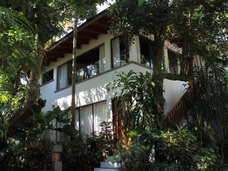 Peace and comfort, at the edge of San Jose - Escazu vacation rentals