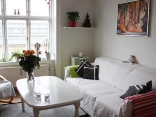 Peaceful Copenhagen apartment near Bispebjerg station - Copenhagen vacation rentals