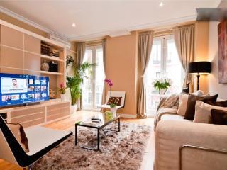 Madrid Center Apartment - WIFI- AC - Madrid vacation rentals