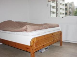 Copenhagen apartment near Enghave station - Copenhagen vacation rentals