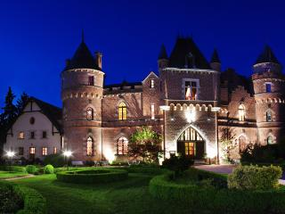Chateau de Maulmont former royal hunting lodge - Auvergne vacation rentals