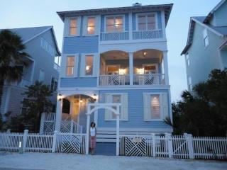 Fabulous Beach Cottage with Ocean Views - Saint Simons Island vacation rentals