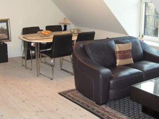 Stylish Copenhagen apartment close to Central Station - Copenhagen vacation rentals