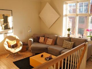 Lovely Copenhagen apartment near Triangle Square - Copenhagen vacation rentals