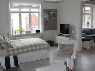 Large luxurious Copenhagen apartment at Frederiksberg - Copenhagen vacation rentals
