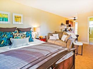 Brand new La Jolla studio-private yard, deck, and short walk to Windansea - La Jolla vacation rentals
