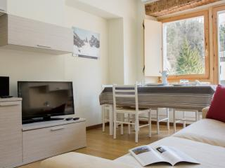 Sorapis - 3453 - Perarolo - Perarolo Di Cadore vacation rentals