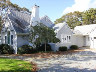 FIEDJ - Walk to Town, Central A/C, Wifi - Edgartown vacation rentals