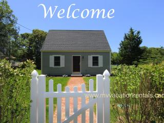 MCKAJ - Adorable Pristine Cape, Close to Town Center and Ink Well Beach. Landscaped Yard, AC, Wi-Fi - Oak Bluffs vacation rentals