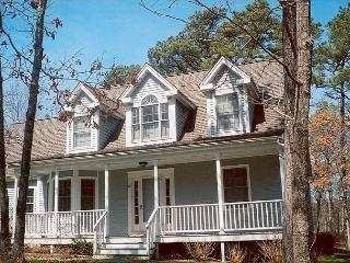NICHJ - Tashmoo Cove, Walk to Association Beach, Tennis and Pool, Central Air - Vineyard Haven vacation rentals