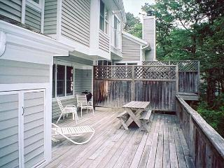 FREES - Tashmoo Cove Condominium, Private Association Pool, Tennis and Beach - Vineyard Haven vacation rentals