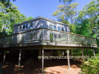 SCHEB - Waterfront on Ice House Pond (Old House Pond),  Swim, Kayak, Spacious Deck with Lovely Views. 15 Minute Walk or 3 Min Drive to  Lambert's Cove Beach - West Tisbury vacation rentals