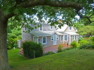 TEELK - Menemsha Village Cottage, Walk to Menemsha Beach, A/C, WiFi, Ferry - Chilmark vacation rentals