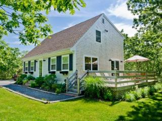 BLANB - Beachy Keen House at Long Point, A/C, Designer Interior, Large Deck, Lovely Yard, 3 TV's, WiFi - West Tisbury vacation rentals