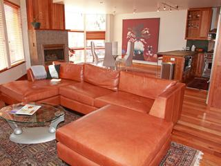 Ice House Penthouse #404 (2 bedrooms, 2.5 bathrooms) - Telluride vacation rentals