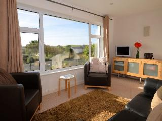 DVIEW - Widemouth Bay vacation rentals
