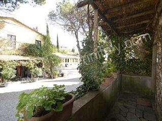 Beautiful 1 bedroom House in Arezzo - Arezzo vacation rentals