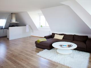 Vacation Apartment in Flensburg - 1184 sqft, luxurious, high-quality, unique (# 5092) - Flensburg vacation rentals