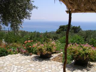 Euphoria Traditional House - Cephalonia vacation rentals