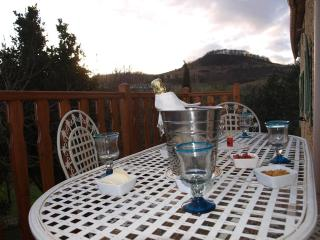 Close to Mirepoix, in the South of France,enjoy - Plavilla vacation rentals