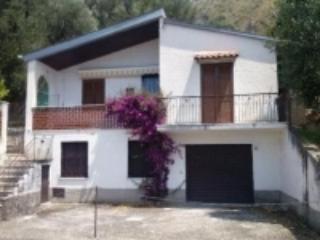 Villa on Cilento coast with see view and olive tree garden - Pisciotta vacation rentals