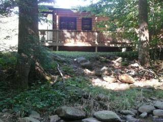 Perfect 1 bedroom Lansing Cabin with A/C - Lansing vacation rentals