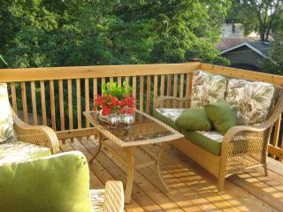 25% OFF Last Minute Deal - Cozy 1Br Apt w/ Balcony & Playground on Light Rail - Minneapolis vacation rentals