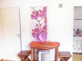 studio rennes les bains - Rennes-les-Bains vacation rentals
