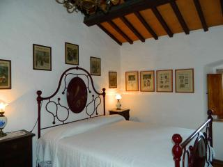 Collegalle Oleandro - Greve in Chianti vacation rentals
