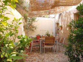 A quiet location in Felines-Minervois, open on the mountain - La Liviniere vacation rentals