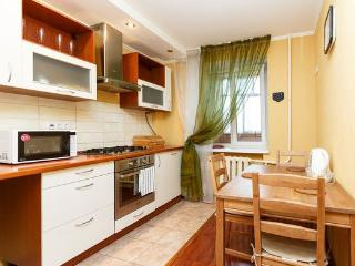 Comfortable and modern apartment! - Kazan vacation rentals