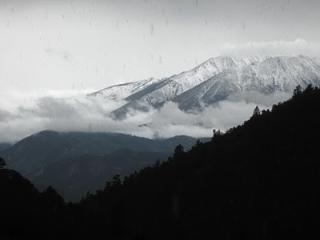 1BR Peaceful,Sustainable Mountain Retreat - Salida - Salida vacation rentals
