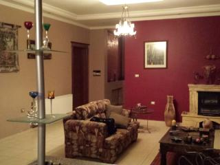 Gorgeous Full level and View apt . - Amman vacation rentals
