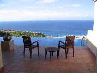 Spectacular Montecristo Luxury Villa - Nov. 1 -16 - Cabo San Lucas vacation rentals