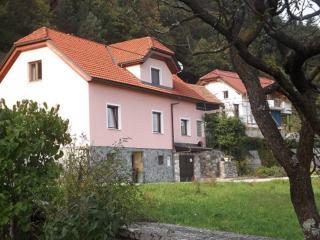 Mountain Escape; Apartma Bela Breza - Nazarje vacation rentals